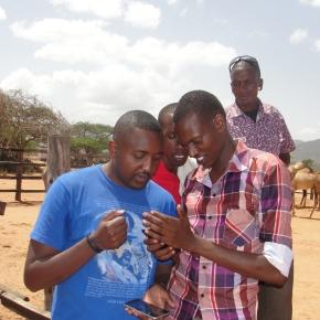 Towards a robust national livestock market information system: Stakeholders convene to chart wayforward